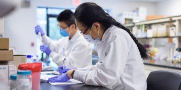 Fact Sheet: Bioanalytical Large Molecule